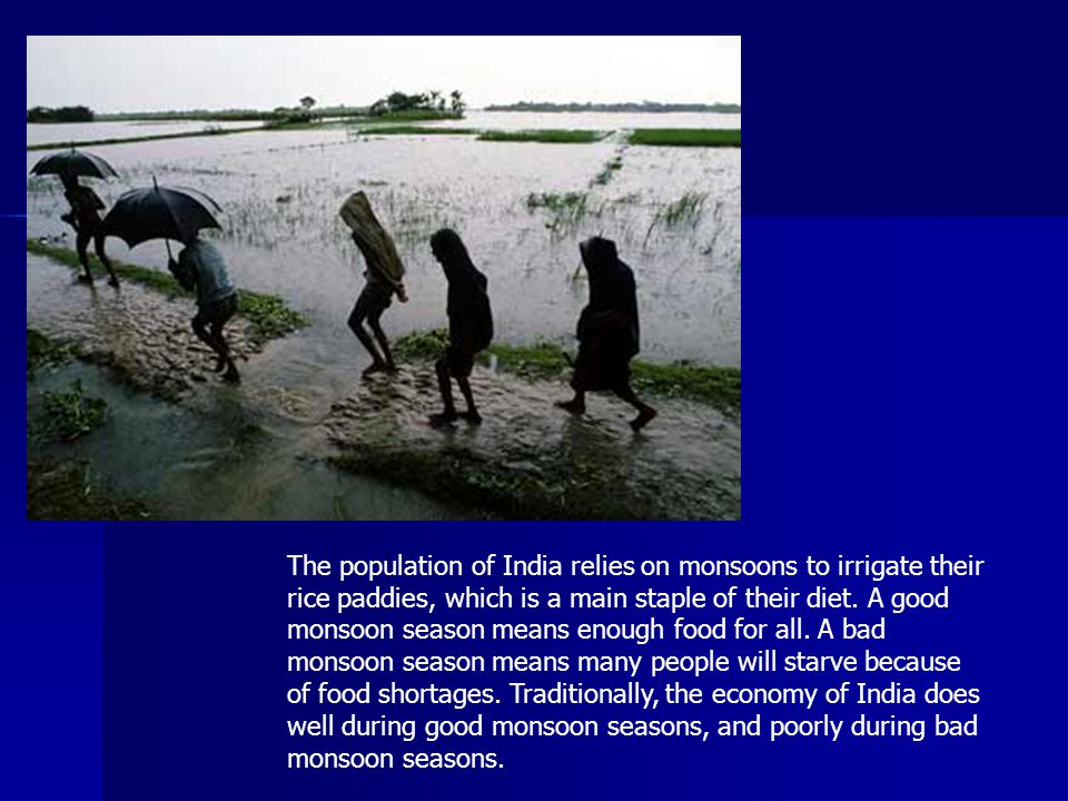 The population of India relies on monsoons to irrigate their rice paddies, which is a main staple of their diet.