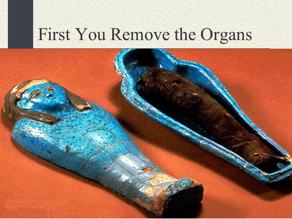 First You Remove the Organs