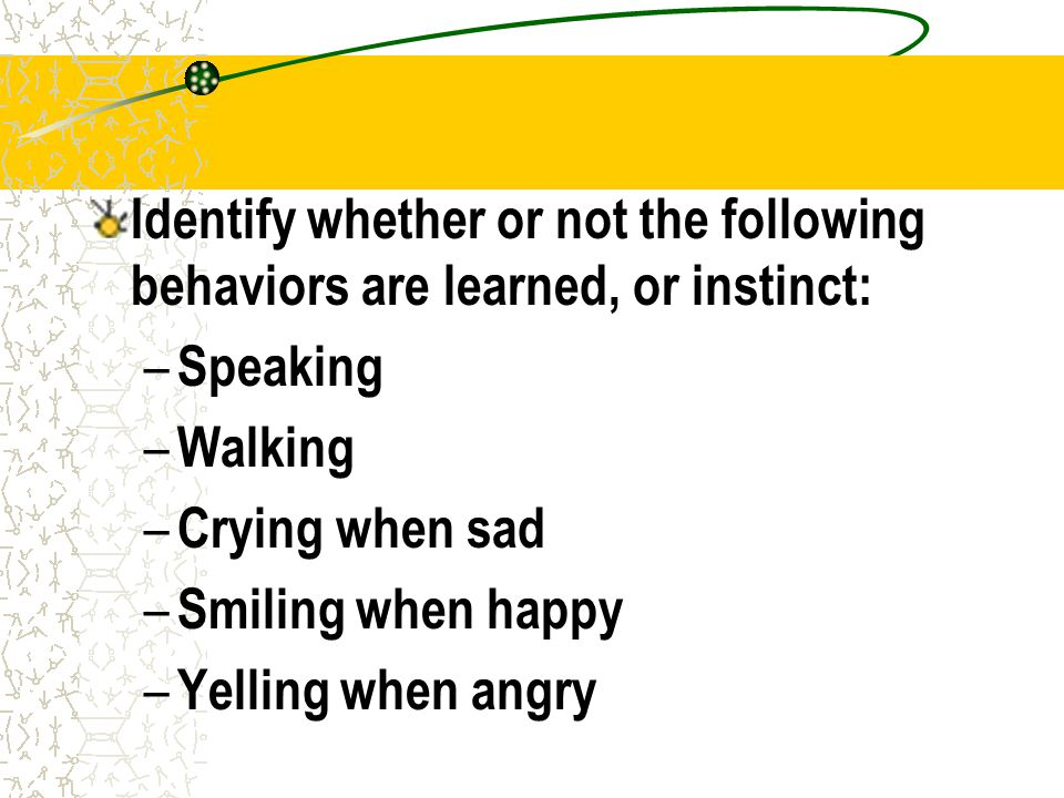Identify whether or not the following behaviors are learned, or instinct: