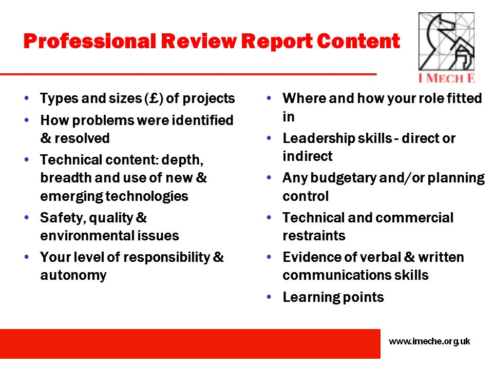 Professional Review Report Content