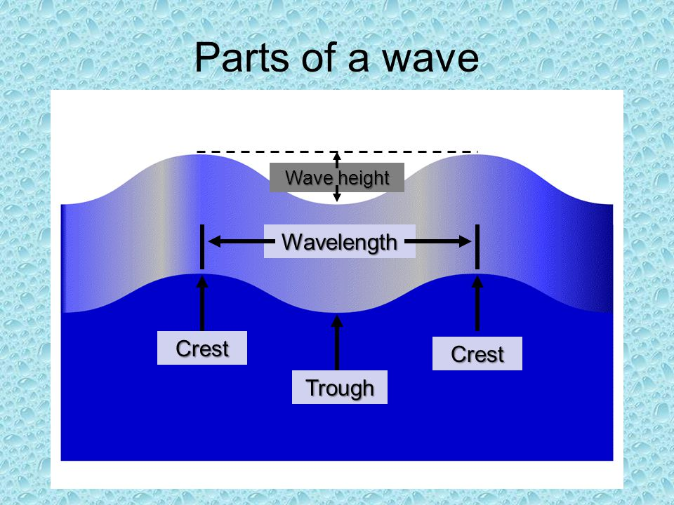 Parts of a wave Wave height Wavelength Crest Crest Trough