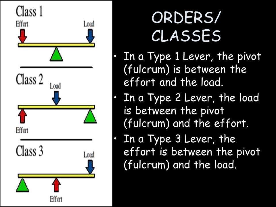 ORDERS/ CLASSES In a Type 1 Lever, the pivot (fulcrum) is between the effort and the load.