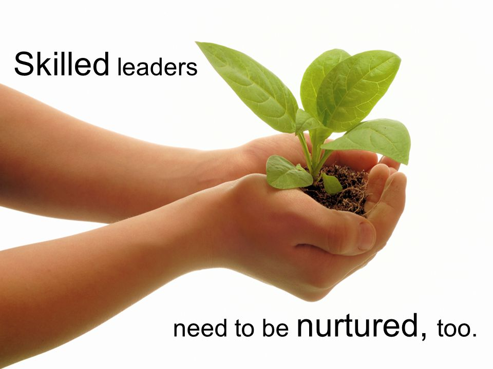 Skilled leaders need to be nurtured, too.