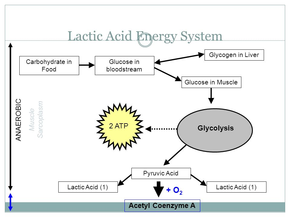 Lactic Acid Energy System