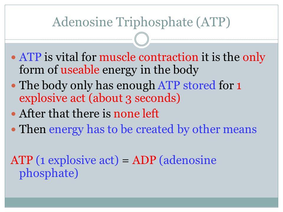 Adenosine Triphosphate (ATP)