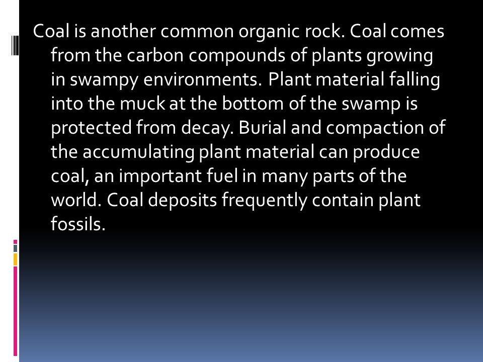 Coal is another common organic rock