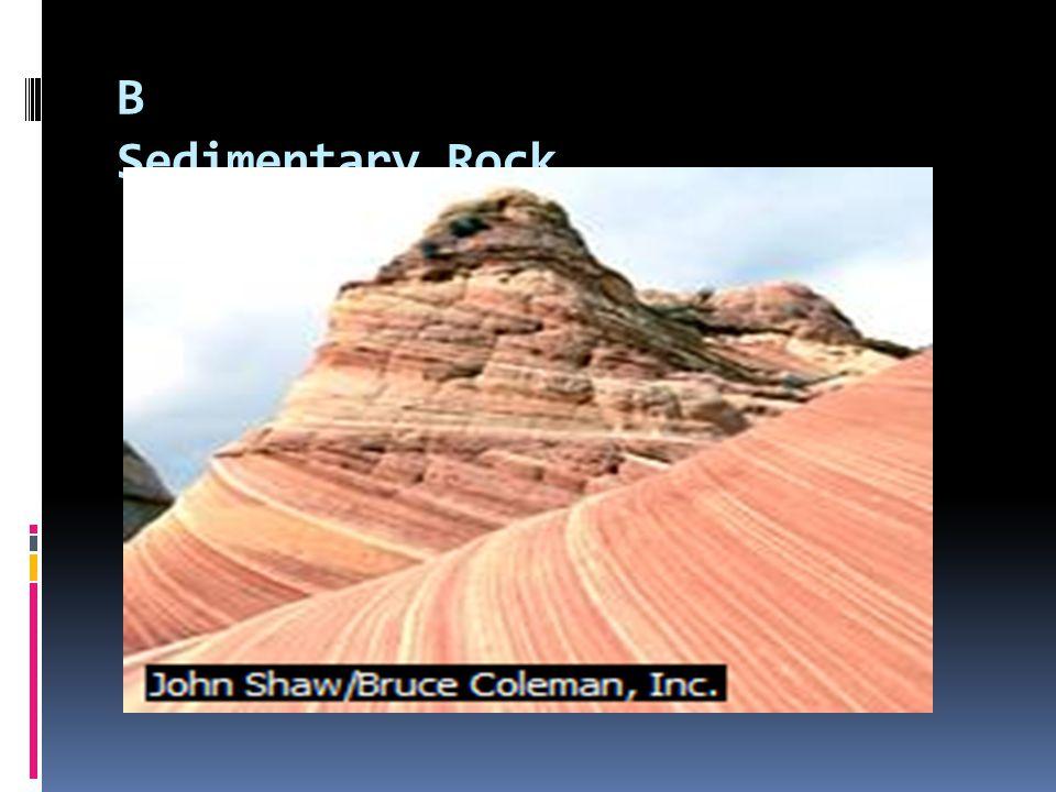 B Sedimentary Rock
