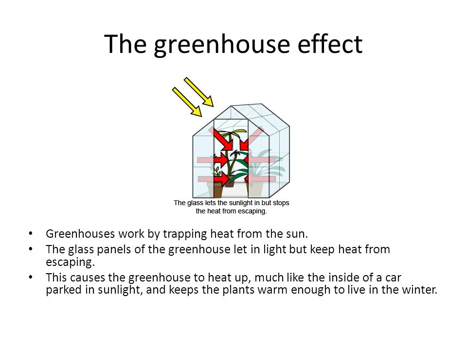 The greenhouse effect Greenhouses work by trapping heat from the sun.