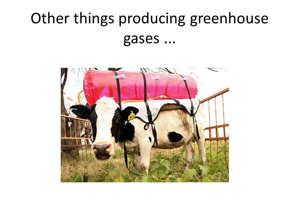 Other things producing greenhouse gases ...