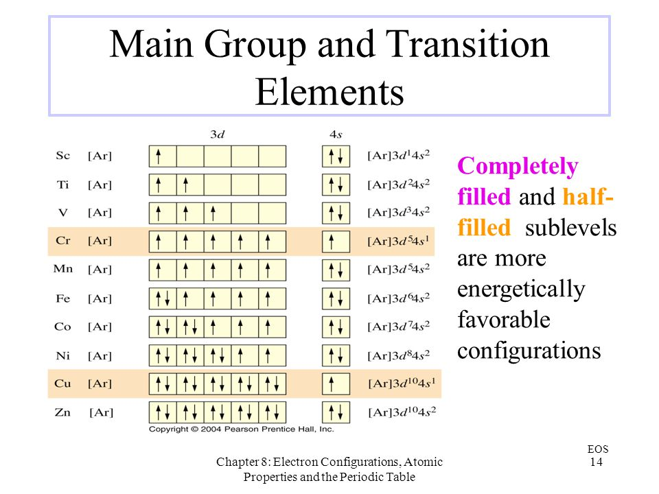 Main Group and Transition Elements