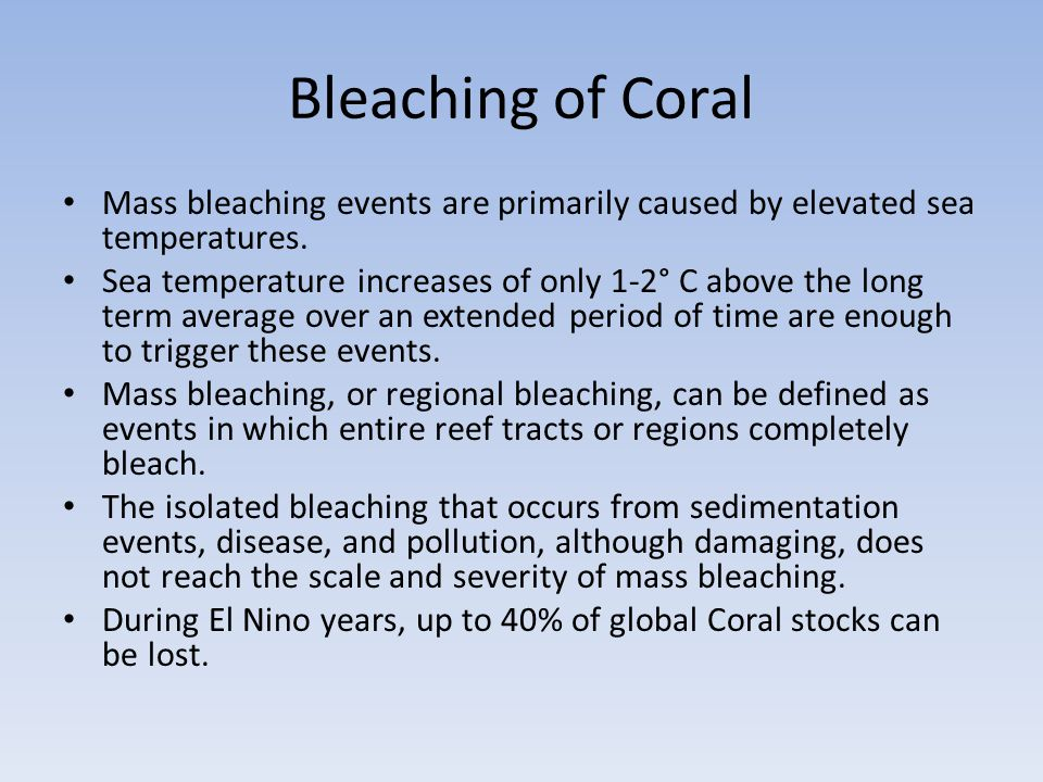 Bleaching of Coral Mass bleaching events are primarily caused by elevated sea temperatures.