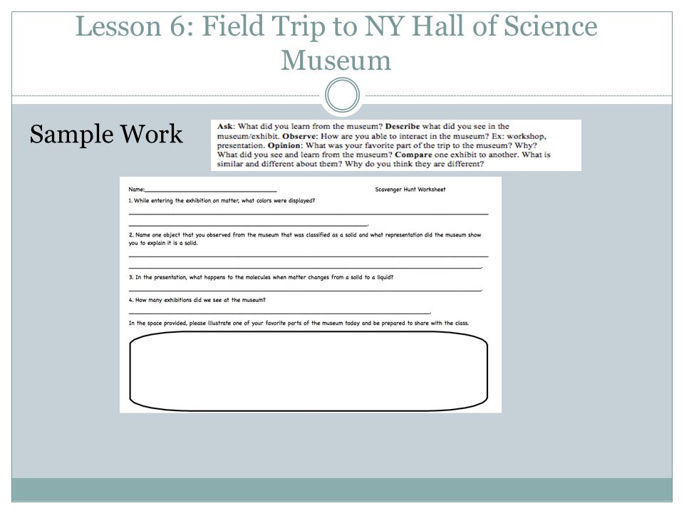Lesson 6: Field Trip to NY Hall of Science Museum