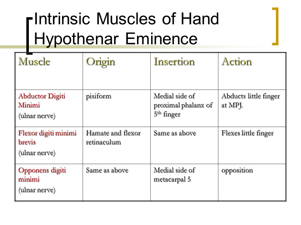 Intrinsic Muscles of Hand Hypothenar Eminence