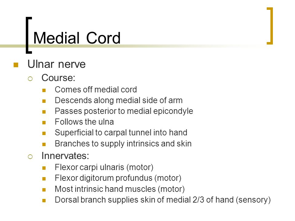 Medial Cord Ulnar nerve Course: Innervates: Comes off medial cord
