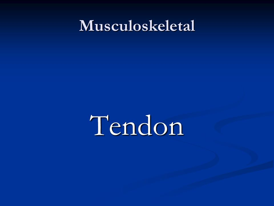 Musculoskeletal Tendon