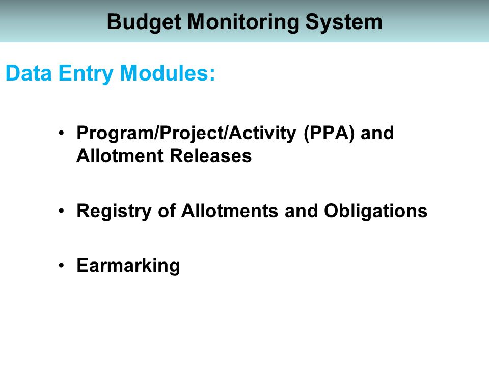 Budget Monitoring System