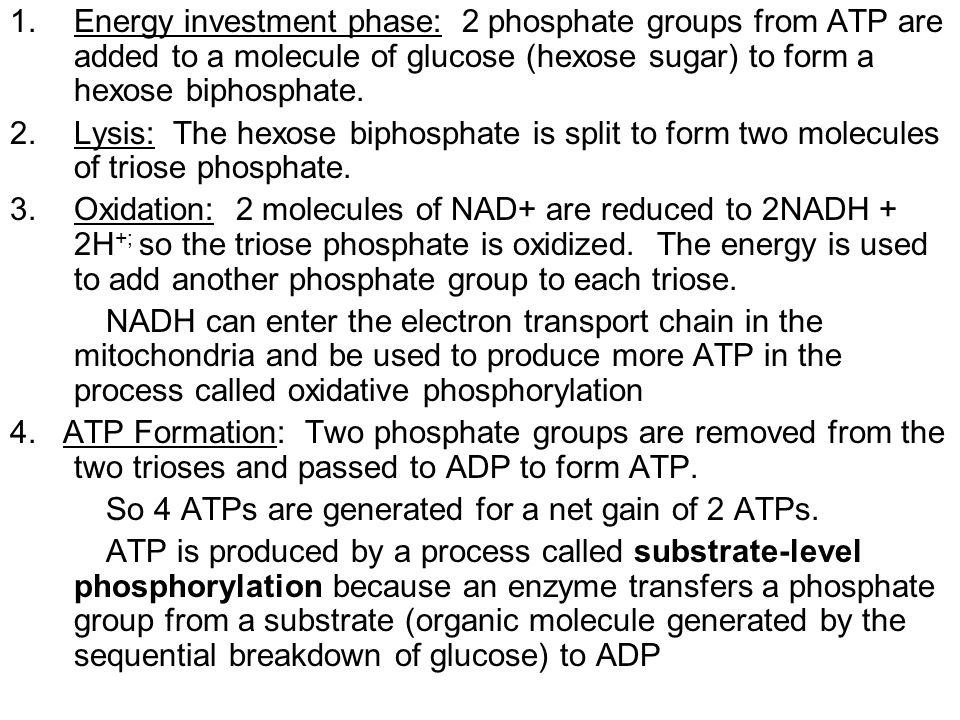 Energy investment phase: 2 phosphate groups from ATP are added to a molecule of glucose (hexose sugar) to form a hexose biphosphate.