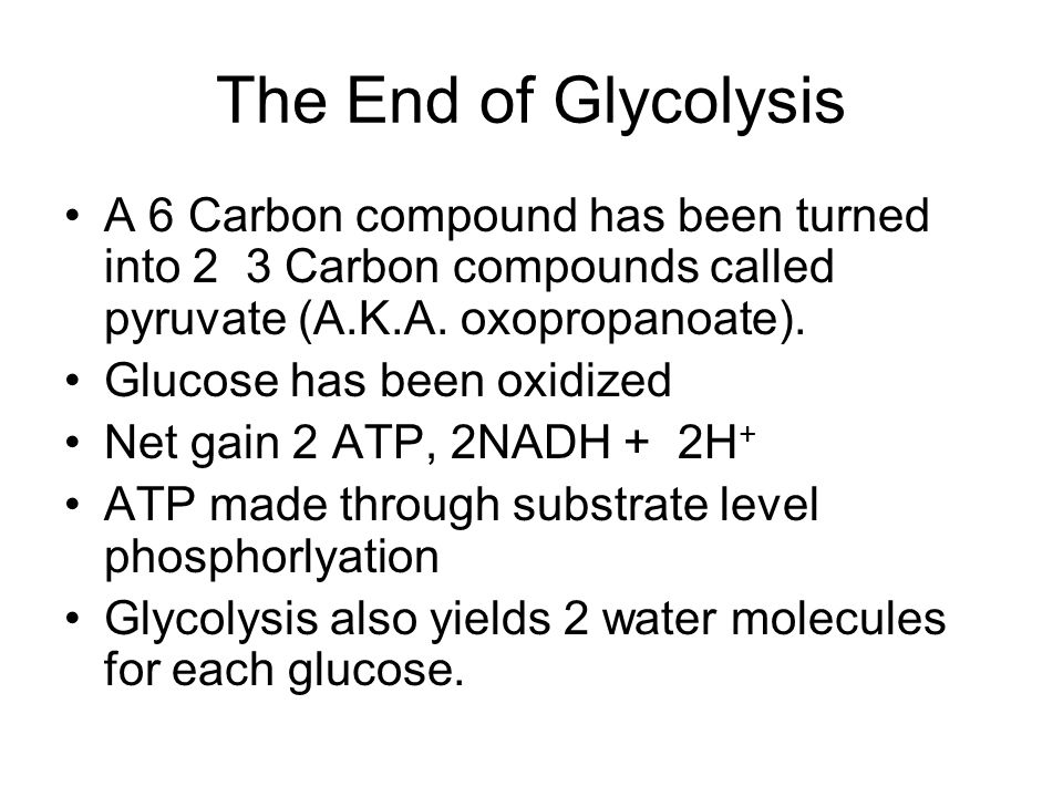 The End of Glycolysis A 6 Carbon compound has been turned into 2 3 Carbon compounds called pyruvate (A.K.A. oxopropanoate).