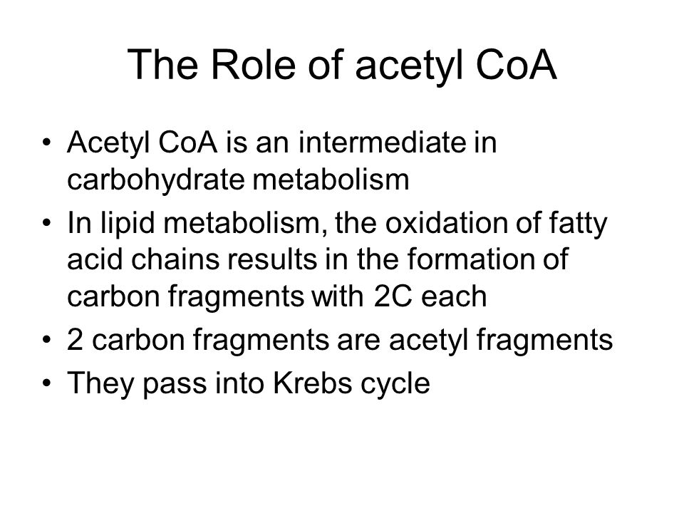 The Role of acetyl CoA Acetyl CoA is an intermediate in carbohydrate metabolism.