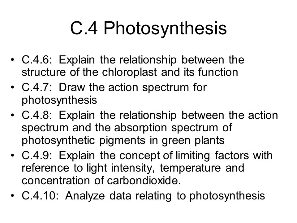 C.4 Photosynthesis C.4.6: Explain the relationship between the structure of the chloroplast and its function.