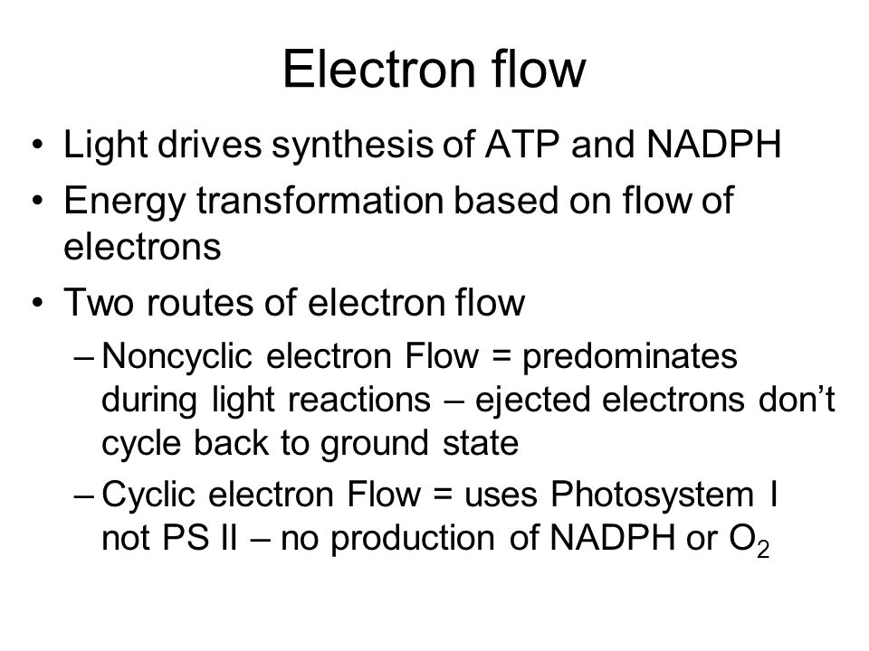 Electron flow Light drives synthesis of ATP and NADPH