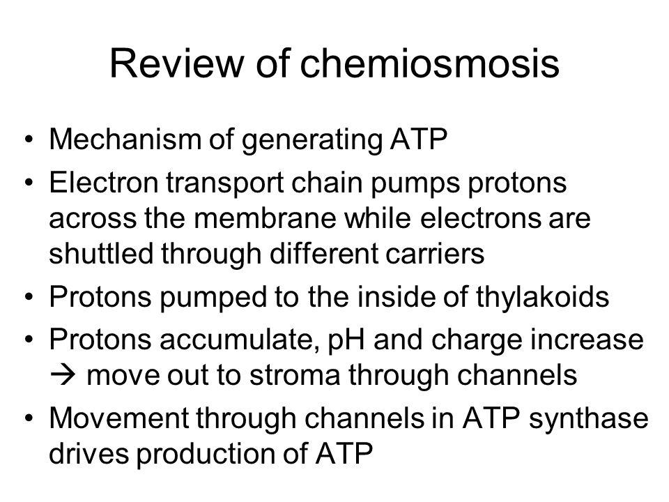 Review of chemiosmosis