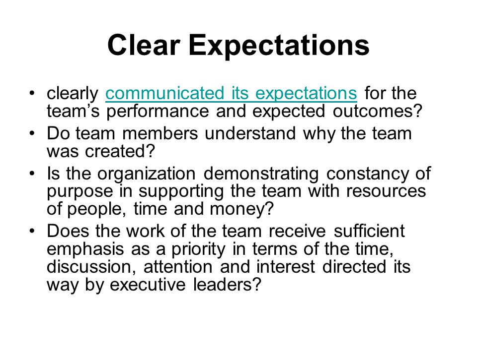 Clear Expectations clearly communicated its expectations for the team's performance and expected outcomes