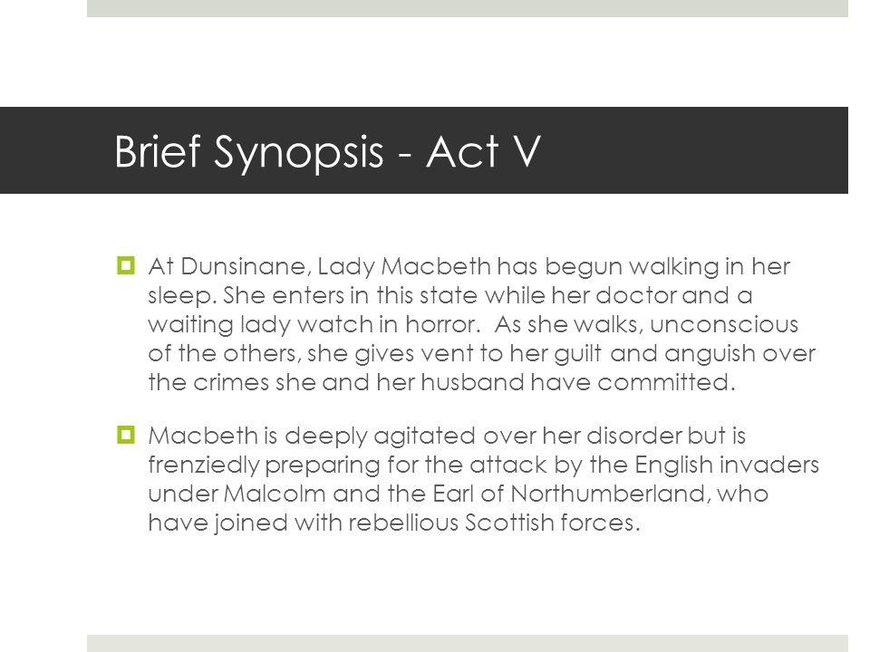 Brief Synopsis - Act V