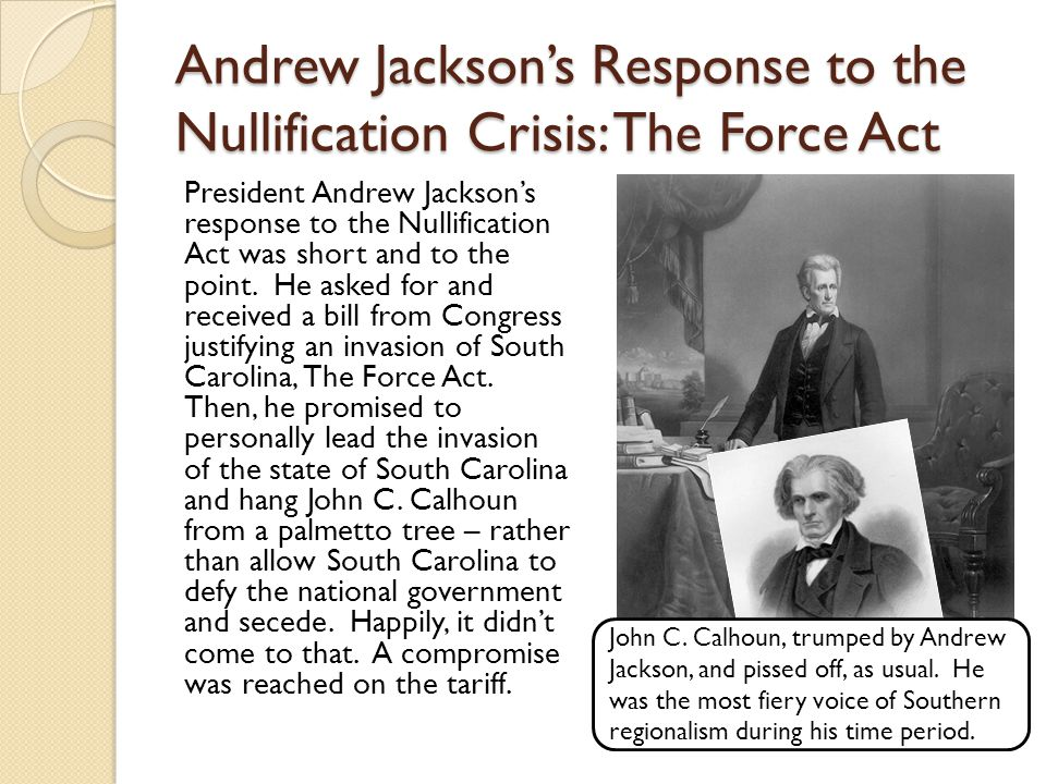 Andrew Jackson's Response to the Nullification Crisis: The Force Act
