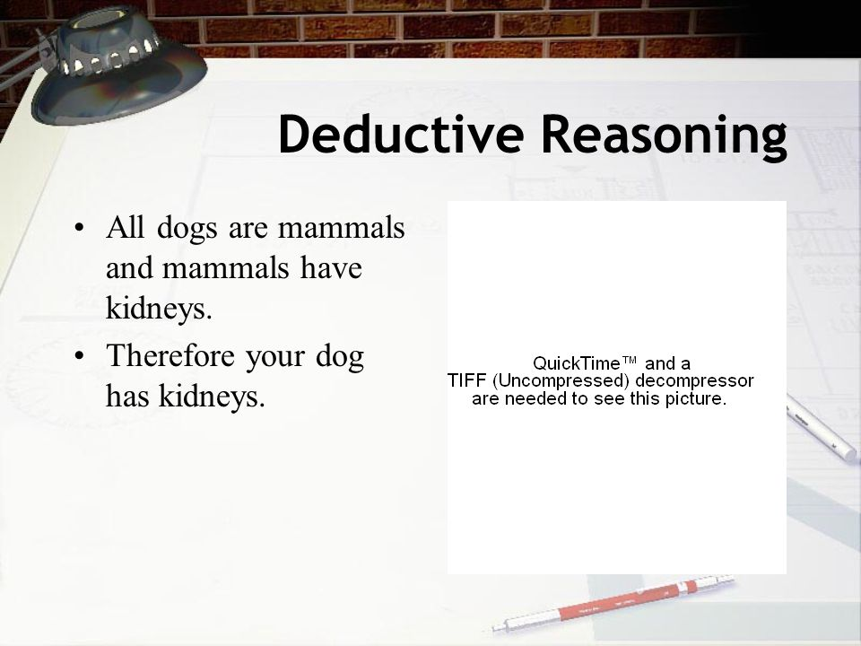 Deductive Reasoning All dogs are mammals and mammals have kidneys.