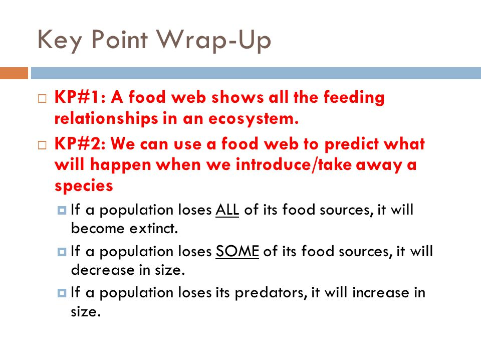 Key Point Wrap-Up KP#1: A food web shows all the feeding relationships in an ecosystem.