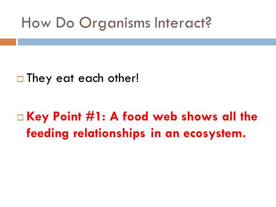 How Do Organisms Interact