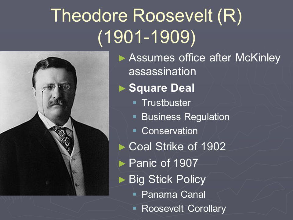 Theodore Roosevelt (R) (1901-1909)
