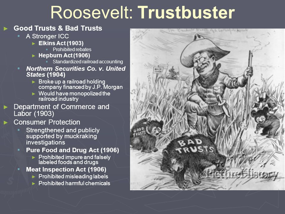 Roosevelt: Trustbuster