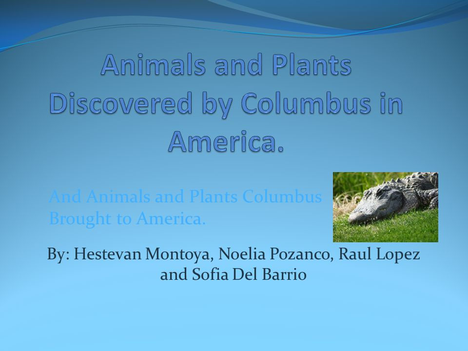 Animals and Plants Discovered by Columbus in America.
