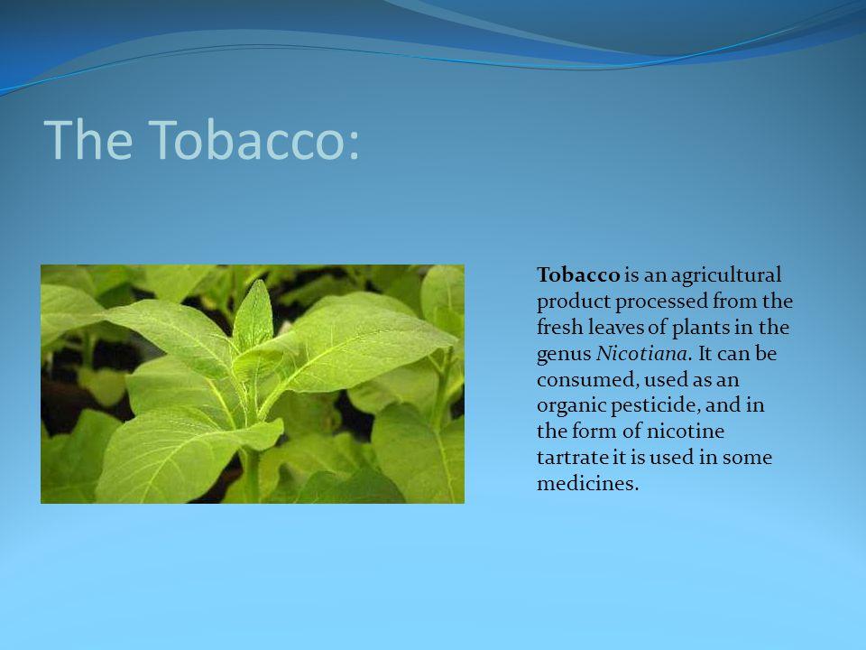 The Tobacco: