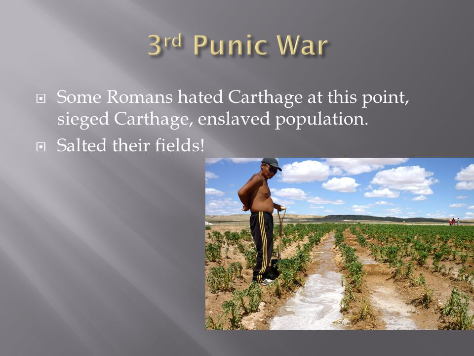3rd Punic War Some Romans hated Carthage at this point, sieged Carthage, enslaved population.