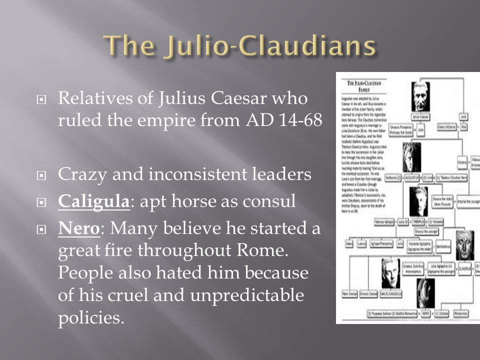 The Julio-Claudians Relatives of Julius Caesar who ruled the empire from AD 14-68. Crazy and inconsistent leaders.