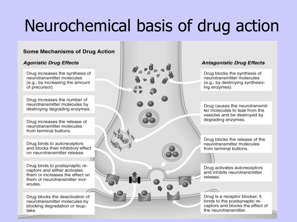 Neurochemical basis of drug action