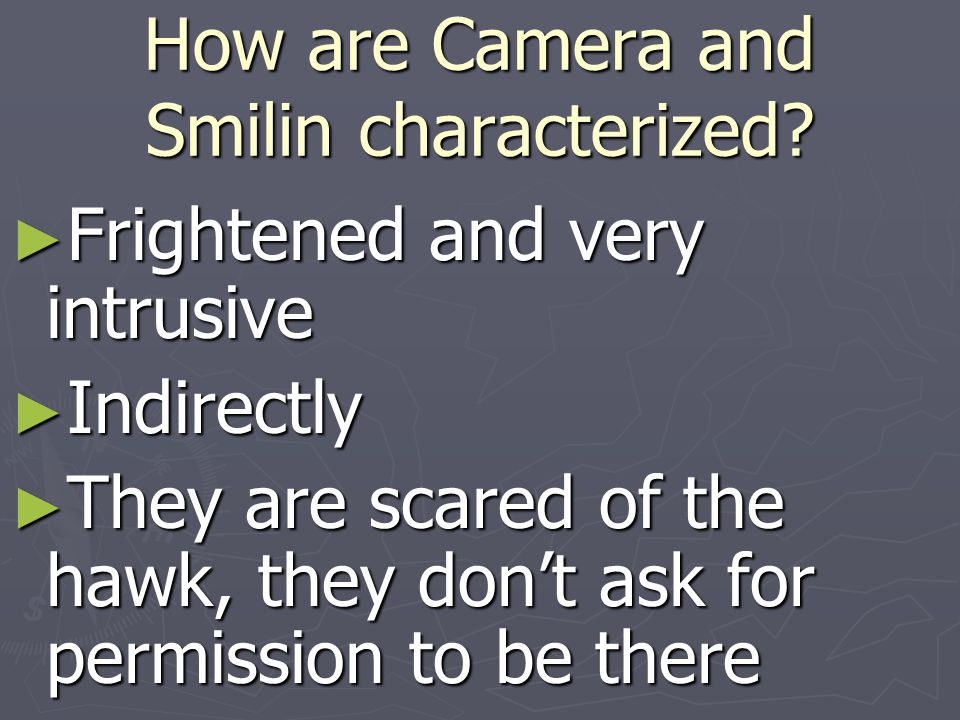 How are Camera and Smilin characterized