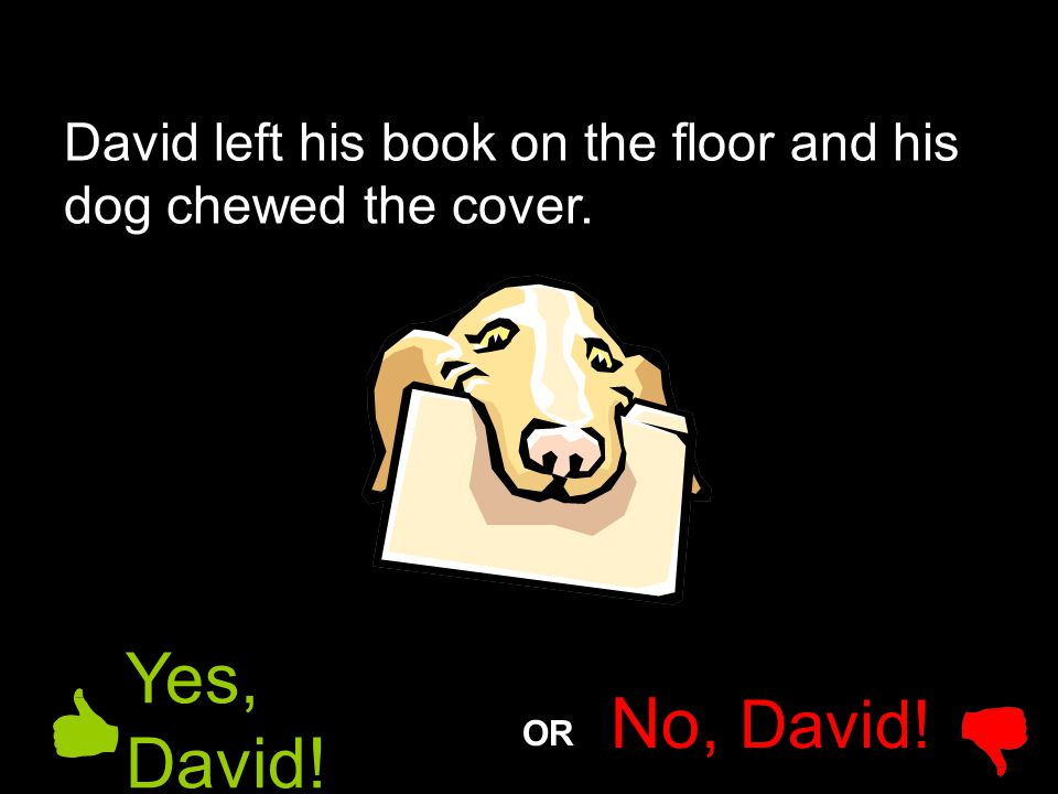 David left his book on the floor and his dog chewed the cover.