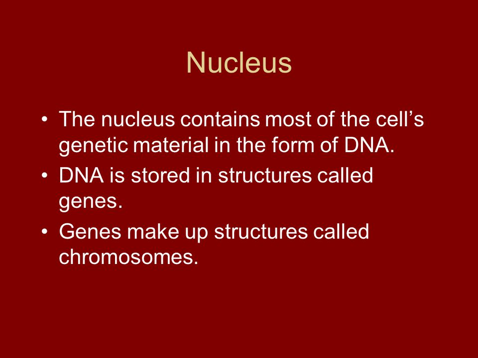 Nucleus The nucleus contains most of the cell's genetic material in the form of DNA. DNA is stored in structures called genes.