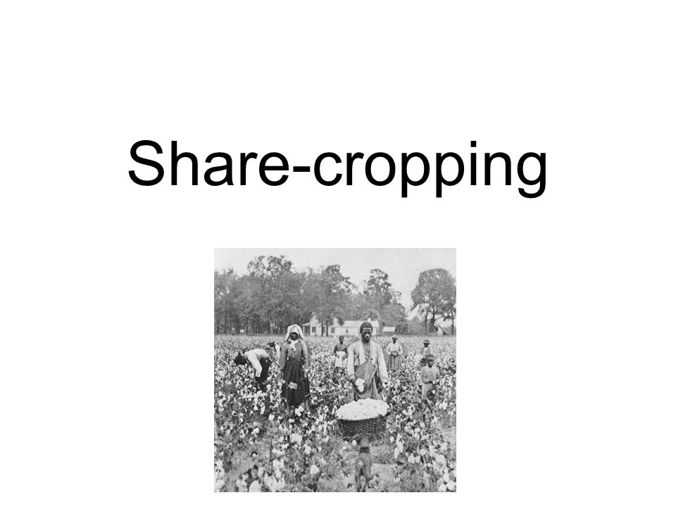 Share-cropping