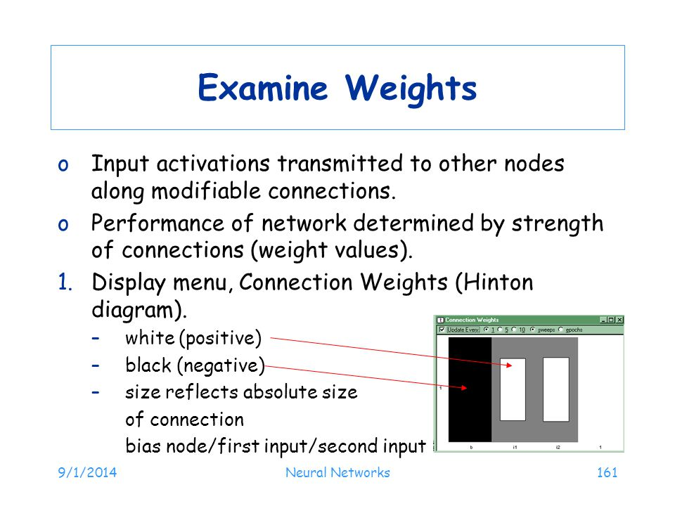 Examine Weights Input activations transmitted to other nodes along modifiable connections.