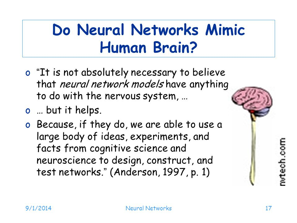 Do Neural Networks Mimic Human Brain