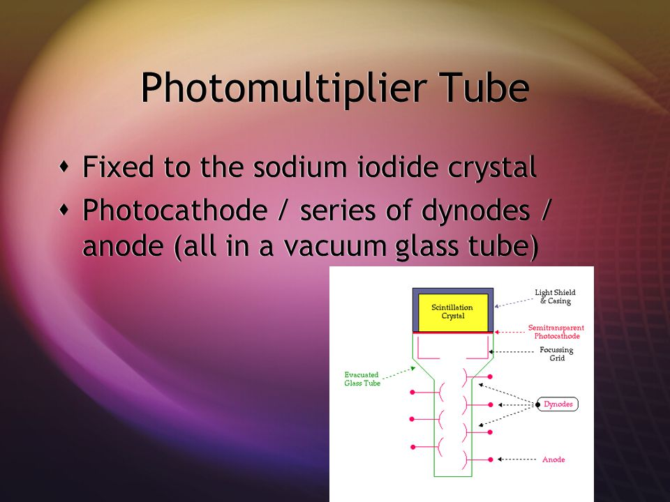 Photomultiplier Tube Fixed to the sodium iodide crystal