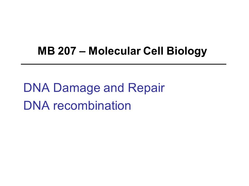 MB 207 – Molecular Cell Biology