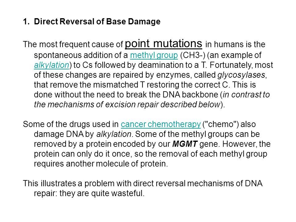 Direct Reversal of Base Damage