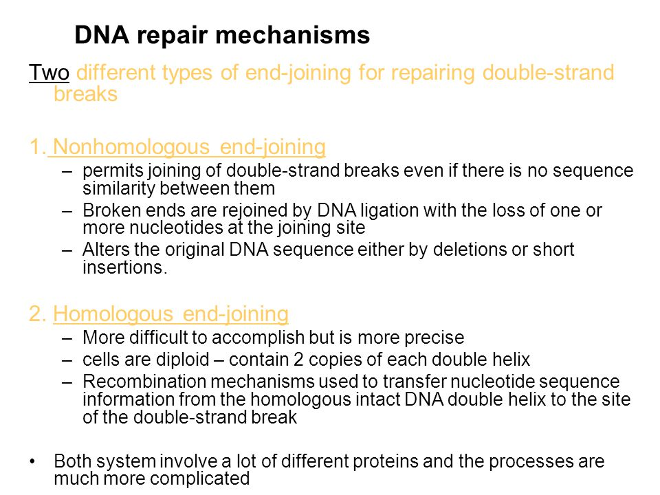DNA repair mechanisms Two different types of end-joining for repairing double-strand breaks. 1. Nonhomologous end-joining.