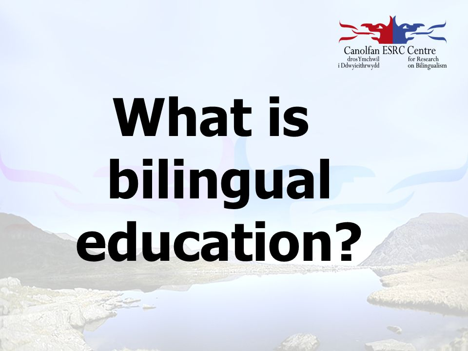 What is bilingual education